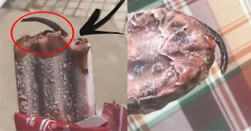 गर्मी में 'Icecream' खाने वाले हो जाईये सावधान, महिला की आइसक्रीम में निकला कुछ ऐसा की..