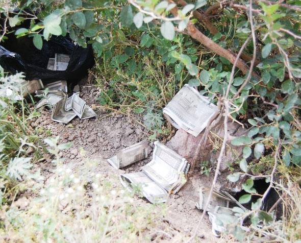 गन्ने के खेत से 2000 और 500 के नोट मिलने से मच गया हड़कंप, गांव वालों ने  जमकर की लूटपाट - IndiaFeeds