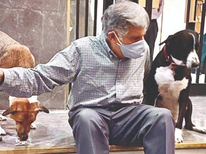 ratan tata with dog